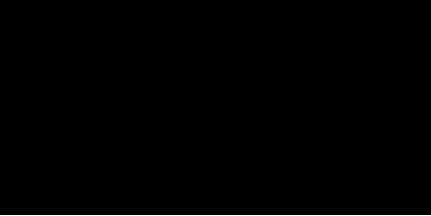 pratico-pratiques-logo